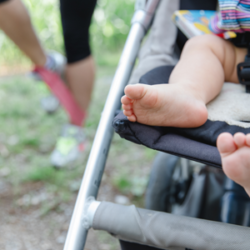 Der Fokus im postnatalen Training